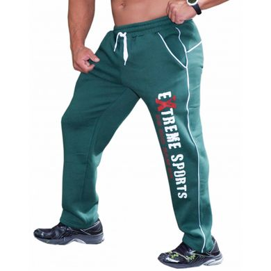 Big Sam, Штаны спортивные зауженные теплые Winter Body Pants Green 966